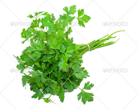 Fresh parsley - Stock Photo - Images