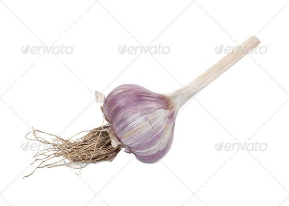 Garlic bulb - Stock Photo - Images