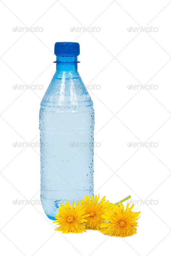 Water bottle and dandelions - Stock Photo - Images