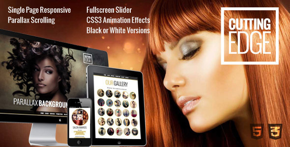 Cutting Edge – Spa Hair Salon WooCommerce WP Theme