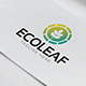 Eco Leaf Logo - GraphicRiver Item for Sale