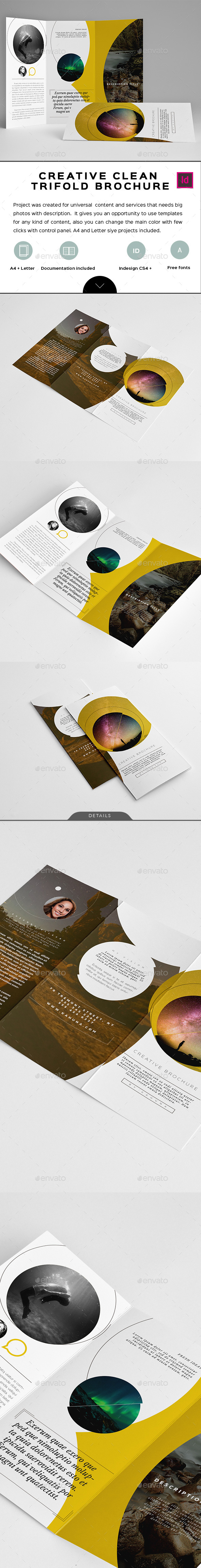 Creative Clean Trifold Brochure - Informational Brochures