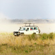 Download Safari tourists on game drive in Serengeti from PhotoDune