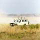 Download Safari tourists on game drive in Serengeti from PhotoDune