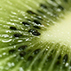 Kiwi Fruit (3-videos) - VideoHive Item for Sale