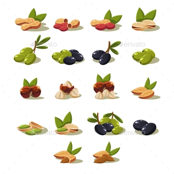 Olives And Nuts, Vector Illustration Modern Design - Food Objects