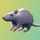 Low Poly Rigged Mouse  - 3DOcean Item for Sale