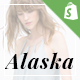 Ap Alaska Shopify Responsive Theme - ThemeForest Item for Sale