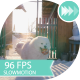 White Dogs Running Towards The Camera - VideoHive Item for Sale
