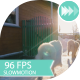 Samoyed Dog Catches The Ball - VideoHive Item for Sale