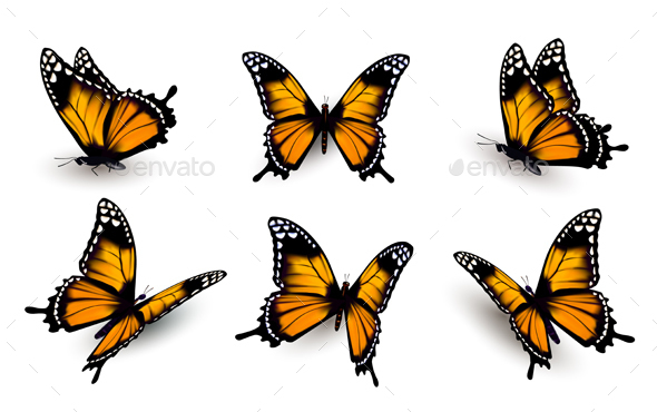 Six Butterflies Set - Animals Characters