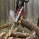 Harvester Cutting Tree Trunk in the Forest. - VideoHive Item for Sale