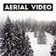 Aerial Video of Winter Forest in Switzerland - VideoHive Item for Sale