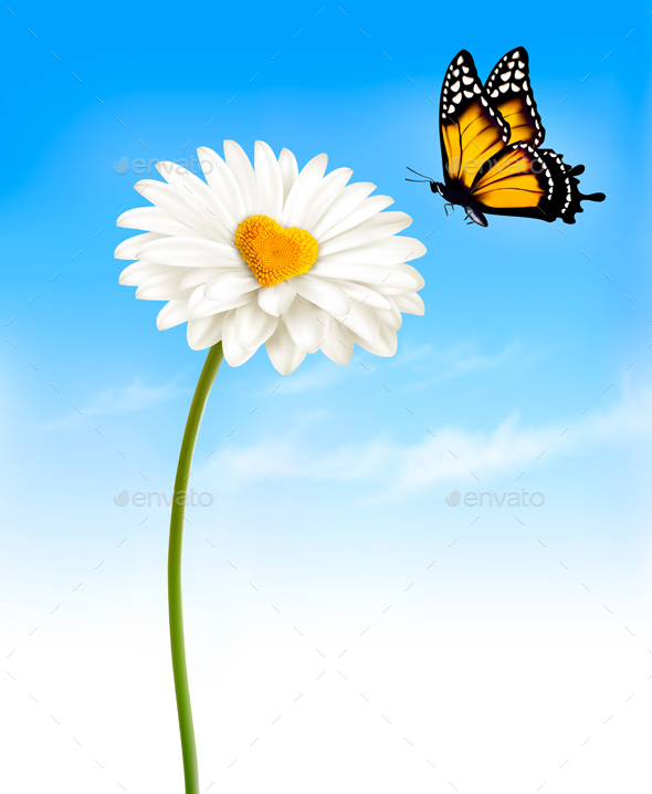 Daisy With A Heart Shaped Middle And A Butterfly Vector - Flowers & Plants Nature