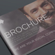 Brochure - GraphicRiver Item for Sale