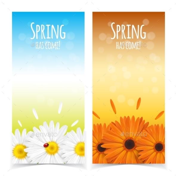 Spring Flowers Composition - Flowers & Plants Nature