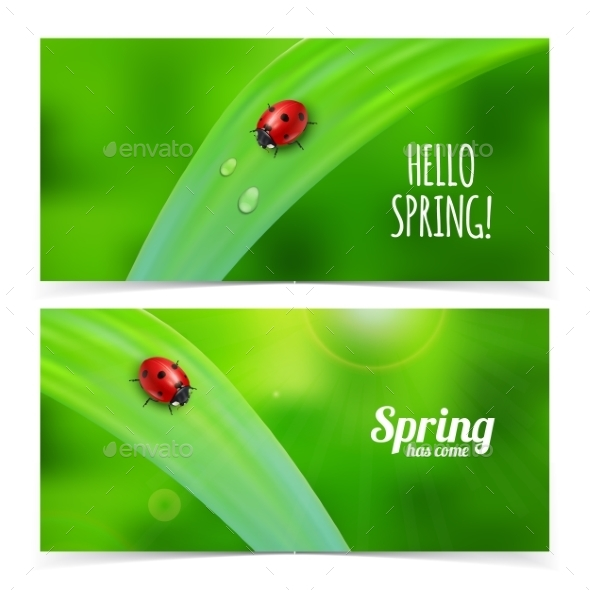 Ladybug on Green Grass - Flowers & Plants Nature