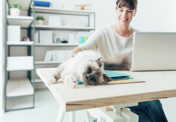 Woman with her cat - Stock Photo - Images