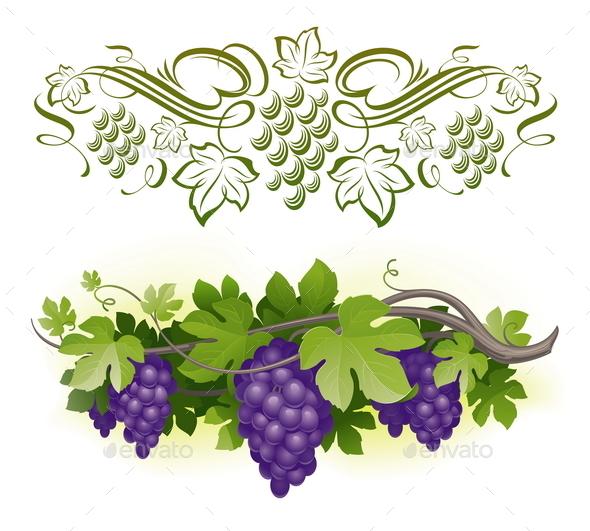 Grapes on a Vine - Decorative Symbols Decorative