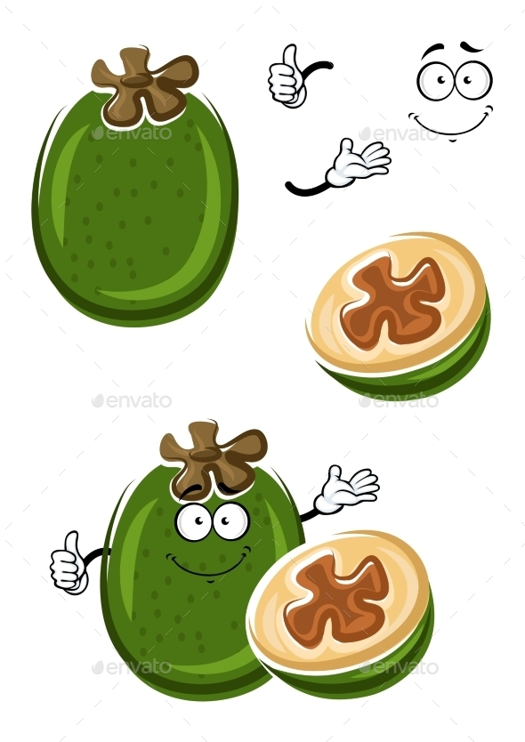 Cartoon Tropical Feijoa Or Pineapple Guava Fruit - Food Objects