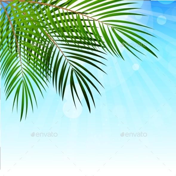 Palm Leaf Background Illustration - Backgrounds Decorative