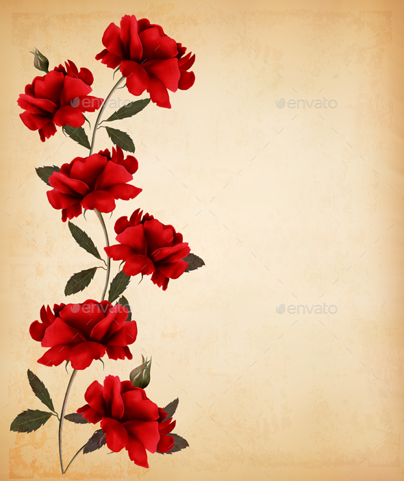 Red Roses On Old Paper Background Vector - Flowers & Plants Nature
