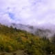 The Movement Of Clouds Over The Autumn Forest.  - VideoHive Item for Sale