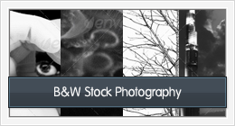 B&W Stock Photography