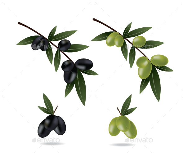 Black and Green Olives - Food Objects