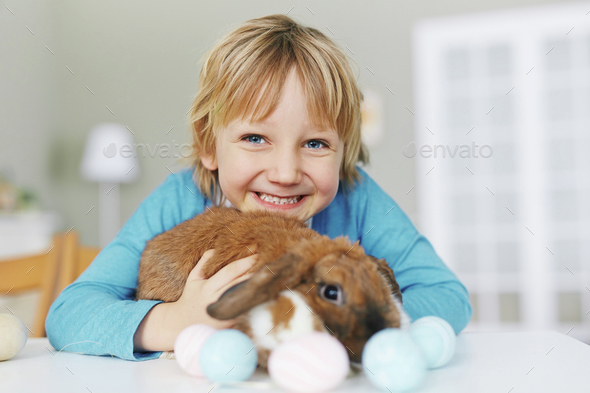 Boy with Easter rabbit - Stock Photo - Images