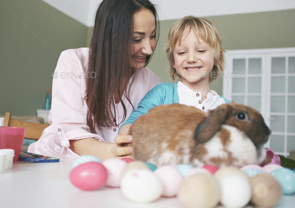 Playing with Easter rabbit - Stock Photo - Images