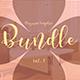 Multipurpose InDesign Magazine Template Bundle V.3 - GraphicRiver Item for Sale