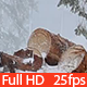 Snowstorm and Pile of Logs on a Backyard - VideoHive Item for Sale