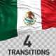 Mexico Flag Transitions - VideoHive Item for Sale