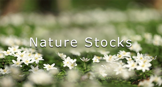 Nature Stocks
