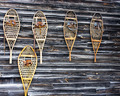 Old Snowshoes - PhotoDune Item for Sale