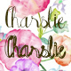 Charslie - GraphicRiver Item for Sale