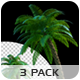 Moving Palms - 3 Pack - VideoHive Item for Sale