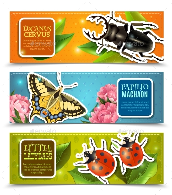Insects Banners Set - Animals Characters