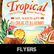 Tropical Beach Summer Party - GraphicRiver Item for Sale