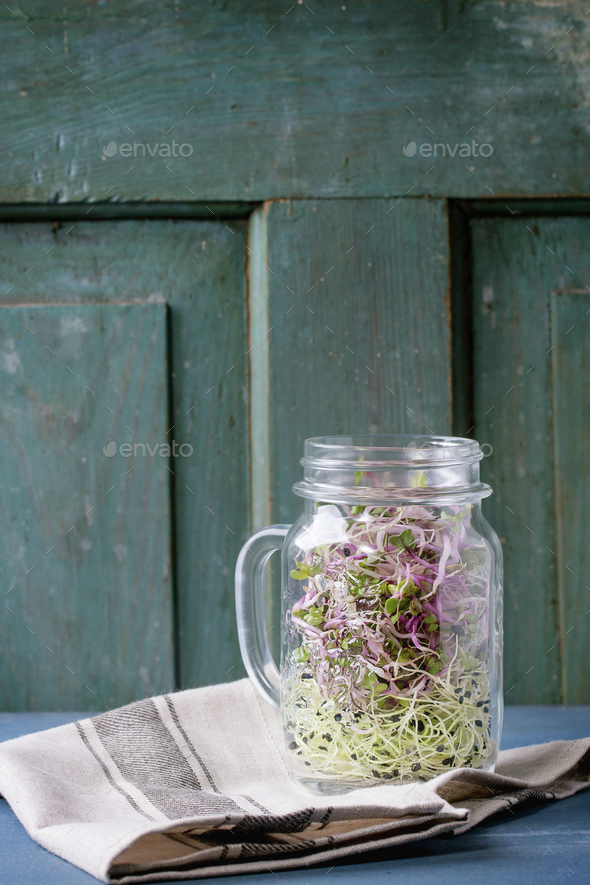 Fresh  Sprouts in mason jar - Stock Photo - Images