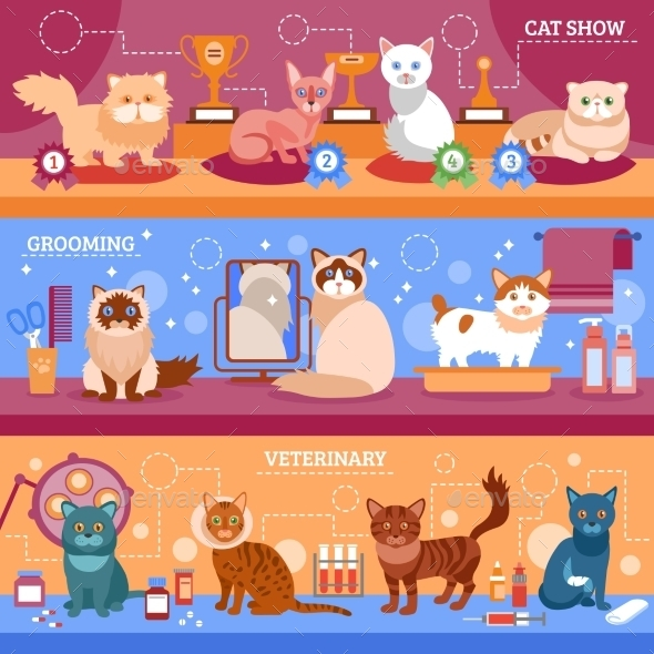 Cats Banner Set - Animals Characters