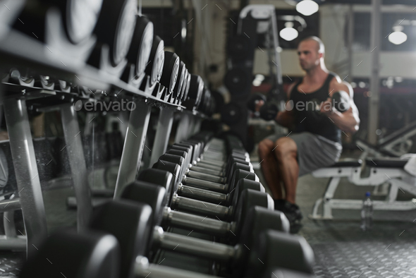 bodybuilder working out with bumbbells weights at the gym - Stock Photo - Images