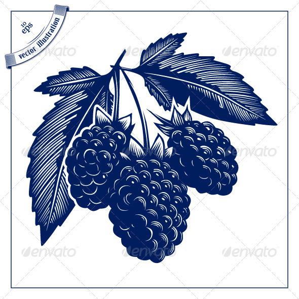 Berries Bush - Food Objects