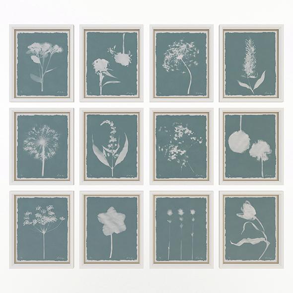 Charlotte Morgan Wild Meadow Flowers - 3DOcean Item for Sale