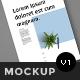 US Flyer Mockup - GraphicRiver Item for Sale