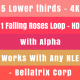 Falling Roses Loop and 5 Lower Thirds - VideoHive Item for Sale