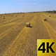 Rolls Of Hay 4K - VideoHive Item for Sale