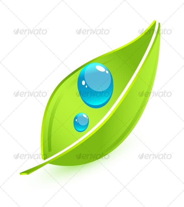 Vector leaf - Nature Conceptual