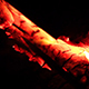 Hot Coals in Bonfire - VideoHive Item for Sale